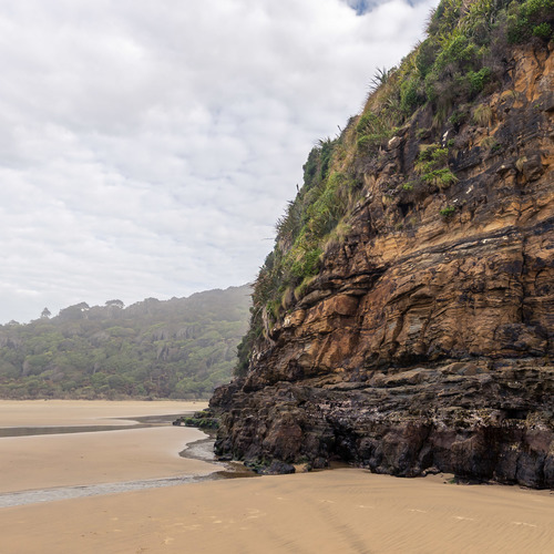 Cliff-face Cathedral Caves, Catlins